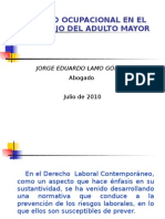 PRESENTACION Salud Ocupacional Adulto Mayor