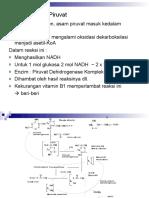 2-ok-piruvat-glikogen(1)
