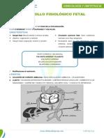 DESARROLLO_FISIOLOGICO_FETAL.pdf
