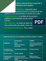 Fisiologia Del Dolor-dr.emilio Herrera