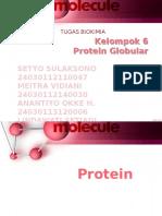 Kelompok 6 Protein Globular(1)