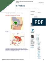 Dr DEO - Próstata