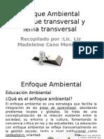 Enfoque Ambiental ,Enfoque Transversal y Tema Transversal