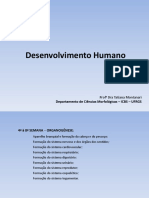 desenvolvimento HUMANO - GRAVIDEZ - SLIDE COMPLETISSIMO.pdf