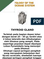 Thyroid Print