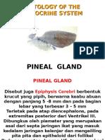 Pineal Print