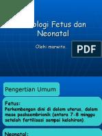 Fisiologi Fetus Dan Neonatal
