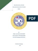 Ch. 3 Measuring Organizational Effectiveness