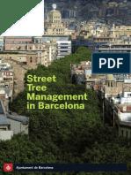 Trees Barcelona