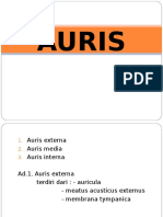 AURIS 1