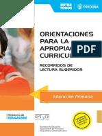 Orientaciones Para La Apropiacion Curricular