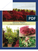 Japanese Maples - Leo Gentry Nursery 2010 Catalog