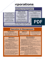 Corporations Big Picture PDF by Brendan Conley Firm