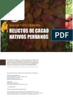 Bagua y Utcubamba Relictos de Cacao Nativos Peruanos