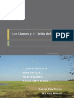 losllanosyregindeltaica-100228024451-phpapp02.pptx