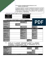 Ficha de Postulación a Palmas Magisteriales 2017