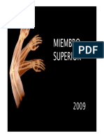 Miembro Superior 1.pdf