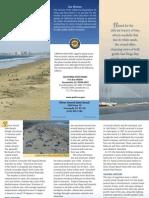 Silver Strand State Beach Park Brochure