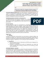Perfil Del Proyecto de Guayaba_seccion 1