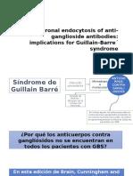 Neuronal Endocytosis of Anti-ganglioside Antibodies
