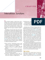 ch_31_Intercellular Junctions.pdf