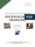 2009.12 - SOCILOGIA DO TRABALHO - TATIANA CLARO.pdf