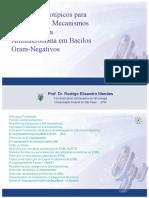 21-metodos+_fenotipicos_deteccao_mecanismoss_rodrigo_mendes