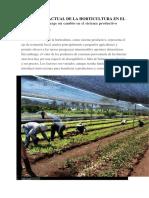 Coyuntura Actual de La Horticultura en El Paraguay