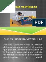 Sistema Vestibular