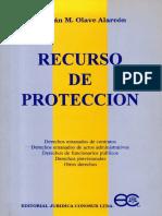 recurso-de-proteccion-cristian-olave-alarcon.pdf