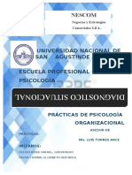 DIAGNOSTICO-SITUACIONAL-NESCOM-S.R.L..docx