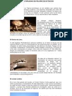 ALGUNAS ESPECIES PERUANAS EN PELIGRO DE EXTINCIÓN.docx