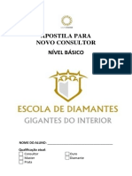 Apostila Escola de Diamantes Pronta