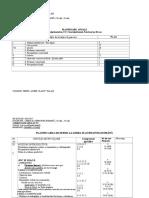 Planificare PROFESIONALA 2014