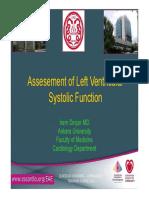 Euroecho 2010 Left Ventricul Assessement Dincer 134