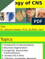 PA Neuropatologi 2012 - dr. Cahyono.pptx
