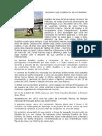 Biografia de Eusébio Da Silva Ferreira