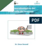 BASES NEUROLOGICAS DEL DESARROLLO DEL LENGUAJE