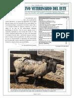 Archivo Veterinario Del Este - 2016