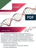 proiect genetica
