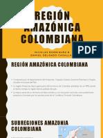Amazonas Final