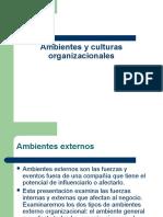 Cap 3 Ambientes Organizacionales
