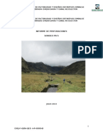 Informe Sondeo Pr-5._rev1