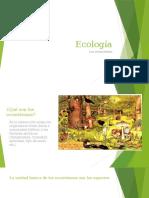 Los Ecosistemas, Unidades Con Sostenibilidad