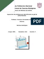 prac electroforesis.docx