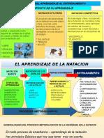 Proceso-natacion Diapositiva Curso