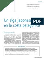 CASAS Un Alga Japones en La Costa Patagonica