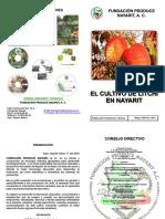 litchi.pdf