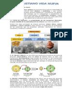 Enlace químico y sus clases.doc