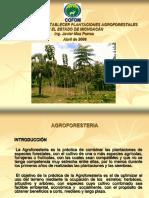 Proyecto Para Establecer Plantaciones Agroforestales en El Estado de Michoacán. Mas Porras, J